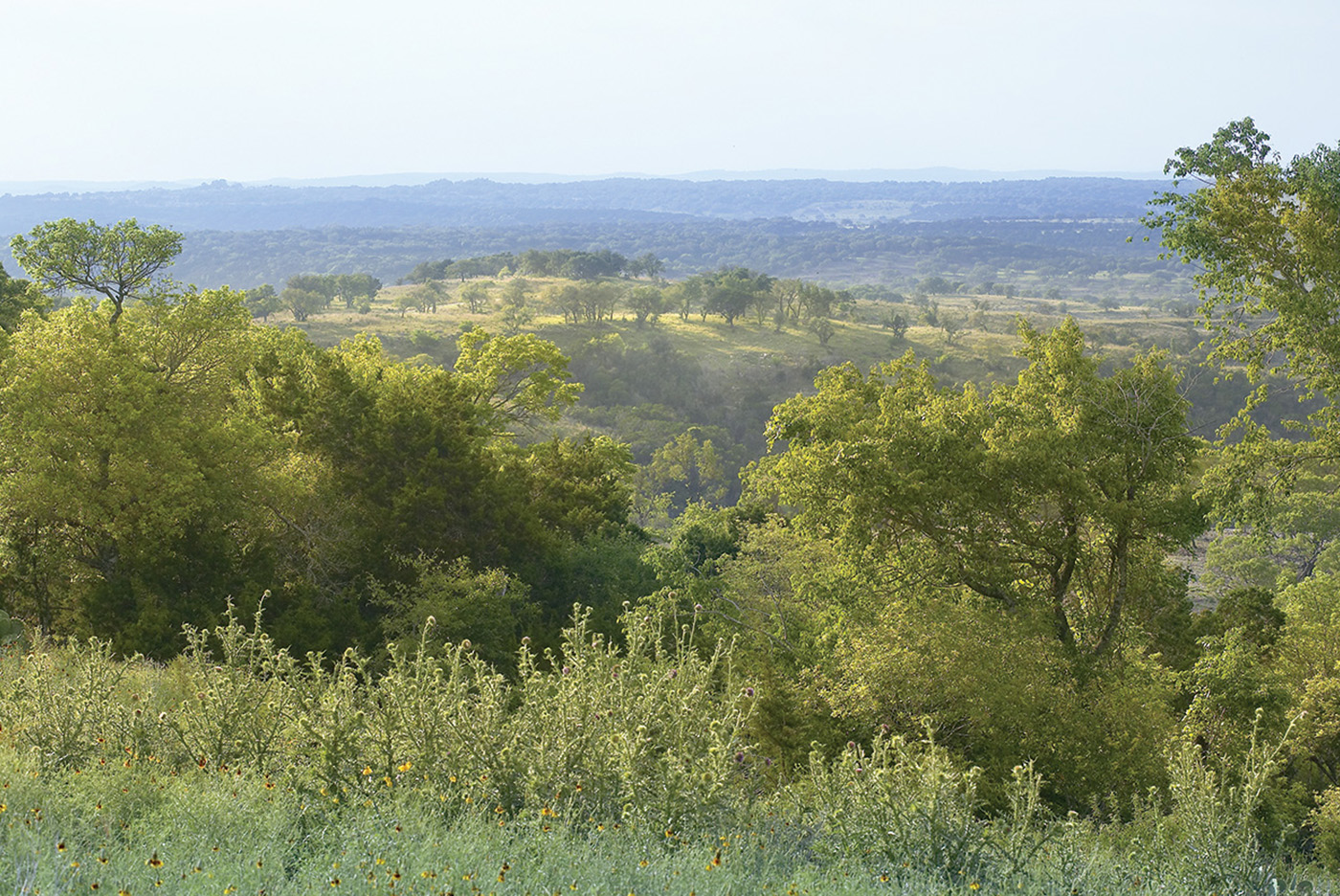 pristine hill country views austin texas luxury homes for sale
