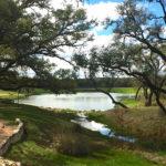 Belvedere Nature Preserve