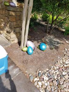 Easter 2017 - 7